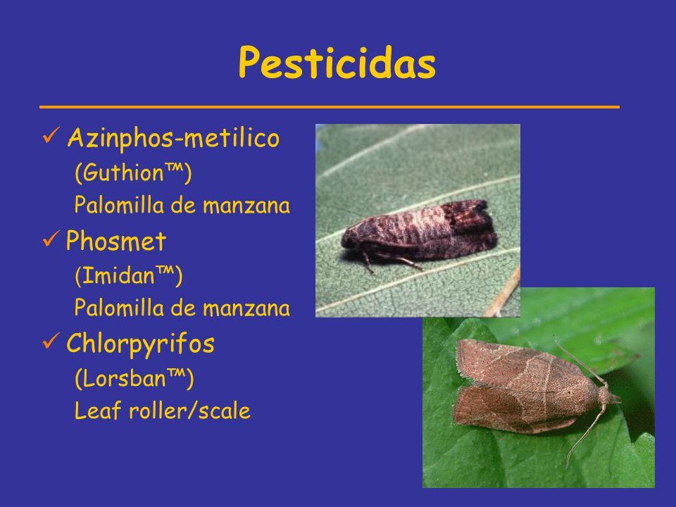 Pesticidas Azinphos-metilico (Guthion) Palomilla de manzana Phosmet ( Imidan) Palomilla de manzana Chlorpyrifos (Lorsban) Leaf roller/scale