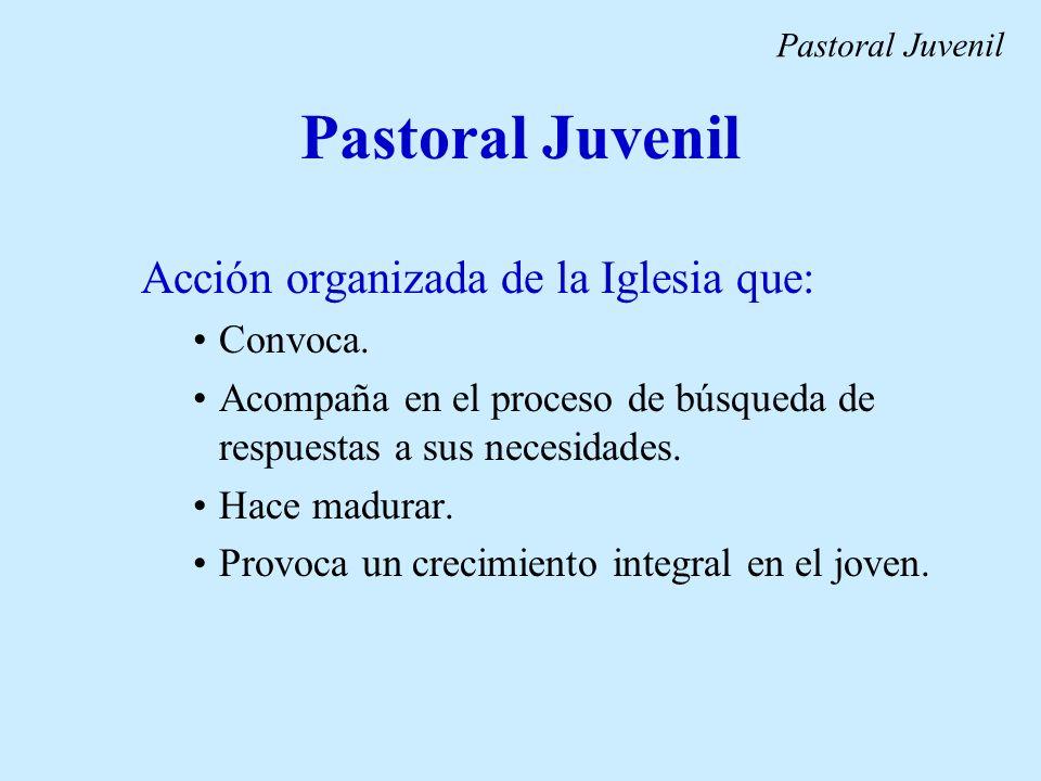 Pastoral Juvenil Acción organizada de la Iglesia que: Convoca. Acompaña en el proceso de búsqueda de respuestas a sus necesidades. Hace madurar. Provo