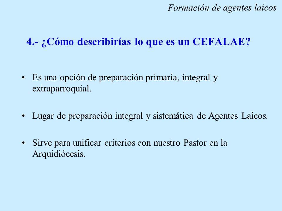 4.- ¿Cómo describirías lo que es un CEFALAE? Es una opción de preparación primaria, integral y extraparroquial. Lugar de preparación integral y sistem