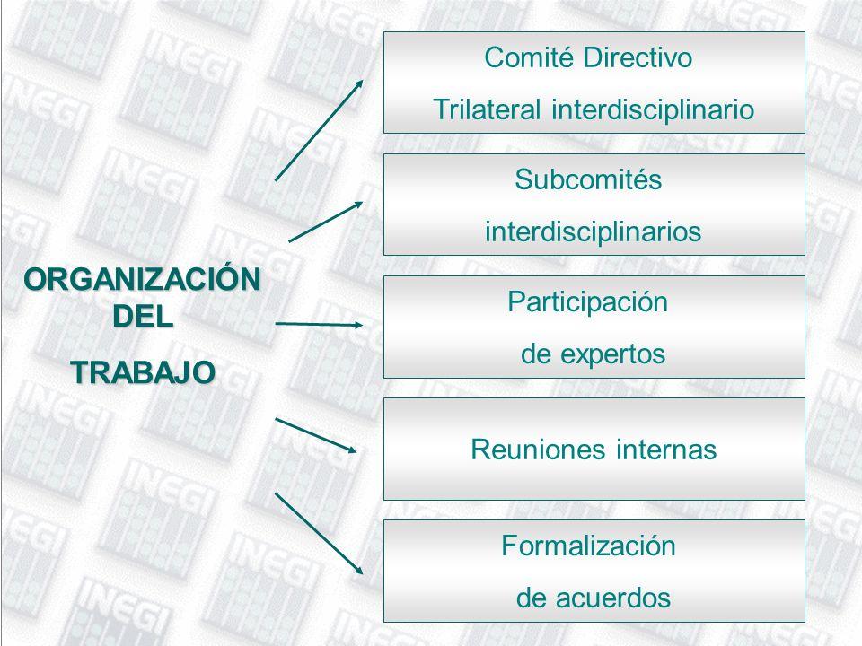 ORGANIZACIÓN DEL TRABAJO Comité Directivo Trilateral interdisciplinario Subcomités interdisciplinarios Formalización de acuerdos Reuniones internas Pa