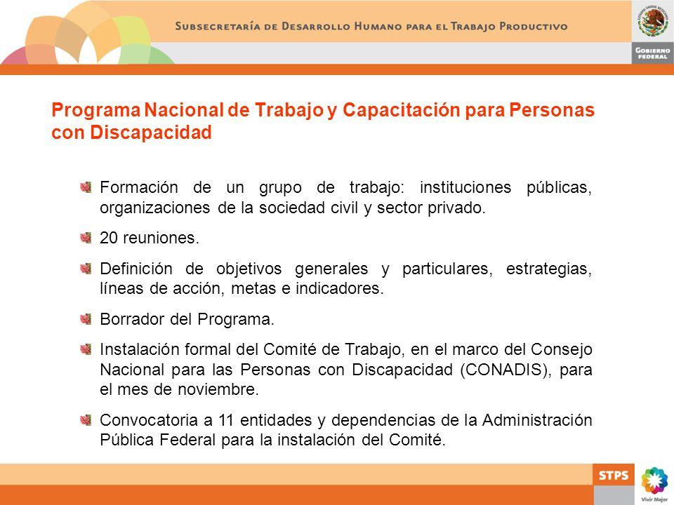 Programa Nacional de Trabajo y Capacitación para Personas con Discapacidad Formación de un grupo de trabajo: instituciones públicas, organizaciones de