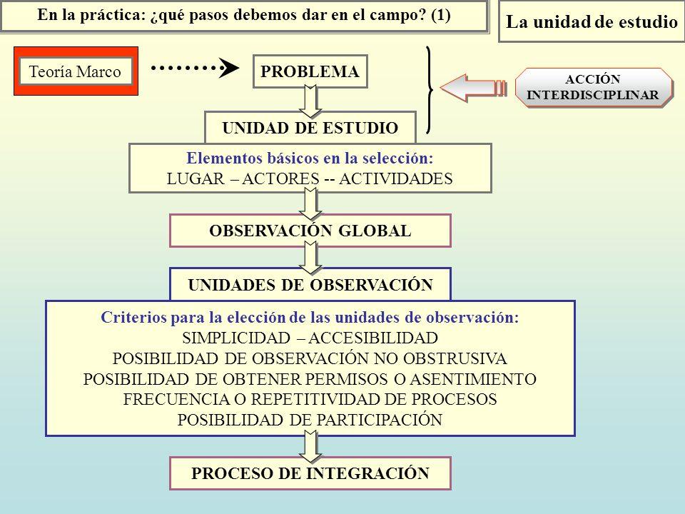 OBSERVACIÓN GLOBAL En la práctica: ¿qué pasos debemos dar en el campo? (1) PROBLEMA Teoría Marco La unidad de estudio UNIDAD DE ESTUDIO Elementos bási