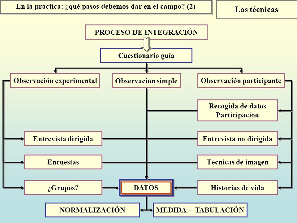 En la práctica: ¿qué pasos debemos dar en el campo? (2) Las técnicas PROCESO DE INTEGRACIÓN Cuestionario guía Observación experimental Observación par