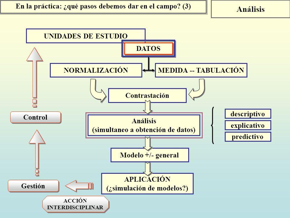 UNIDADES DE ESTUDIO DATOS NORMALIZACIÓNMEDIDA -- TABULACIÓN En la práctica: ¿qué pasos debemos dar en el campo? (3) Análisis Contrastación Análisis (s
