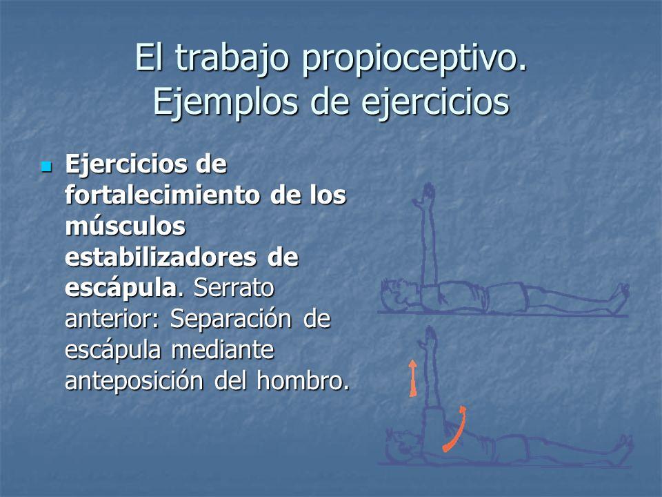 El trabajo propioceptivo. Ejemplos de ejercicios Ejercicios de fortalecimiento de los músculos estabilizadores de escápula. Serrato anterior: Separaci
