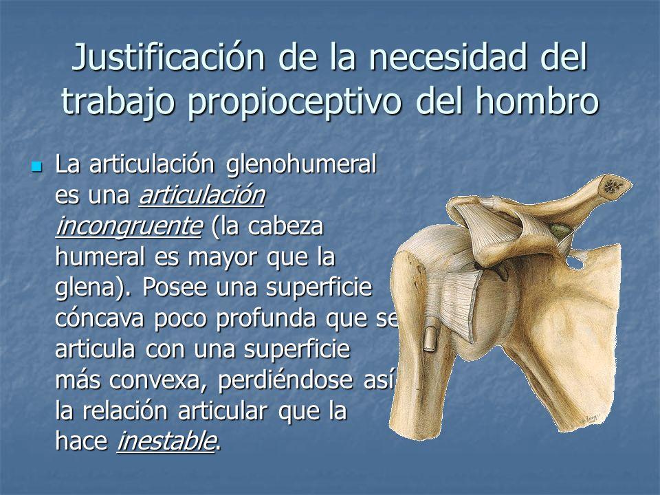Justificación de la necesidad del trabajo propioceptivo del hombro El movimiento de una articulación incongruente no es de rotación alrededor de un eje fijo, sino de deslizamiento sobre un eje de rotación que se traslada permanentemente.