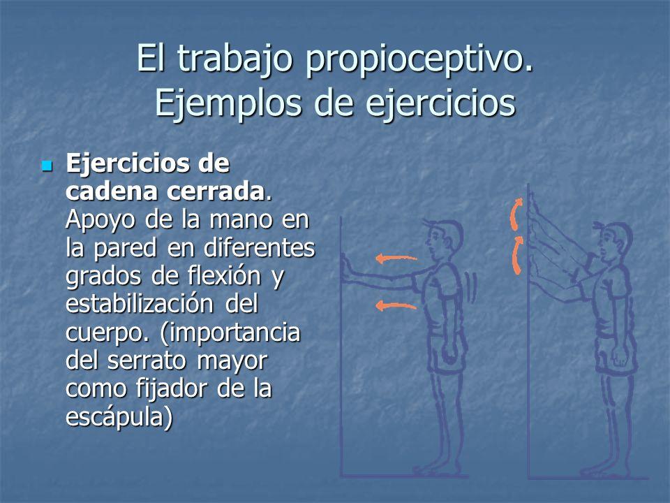 El trabajo propioceptivo. Ejemplos de ejercicios Ejercicios de cadena cerrada. Apoyo de la mano en la pared en diferentes grados de flexión y estabili