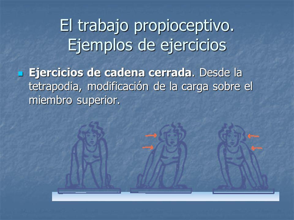 El trabajo propioceptivo. Ejemplos de ejercicios Ejercicios de cadena cerrada. Desde la tetrapodia, modificación de la carga sobre el miembro superior