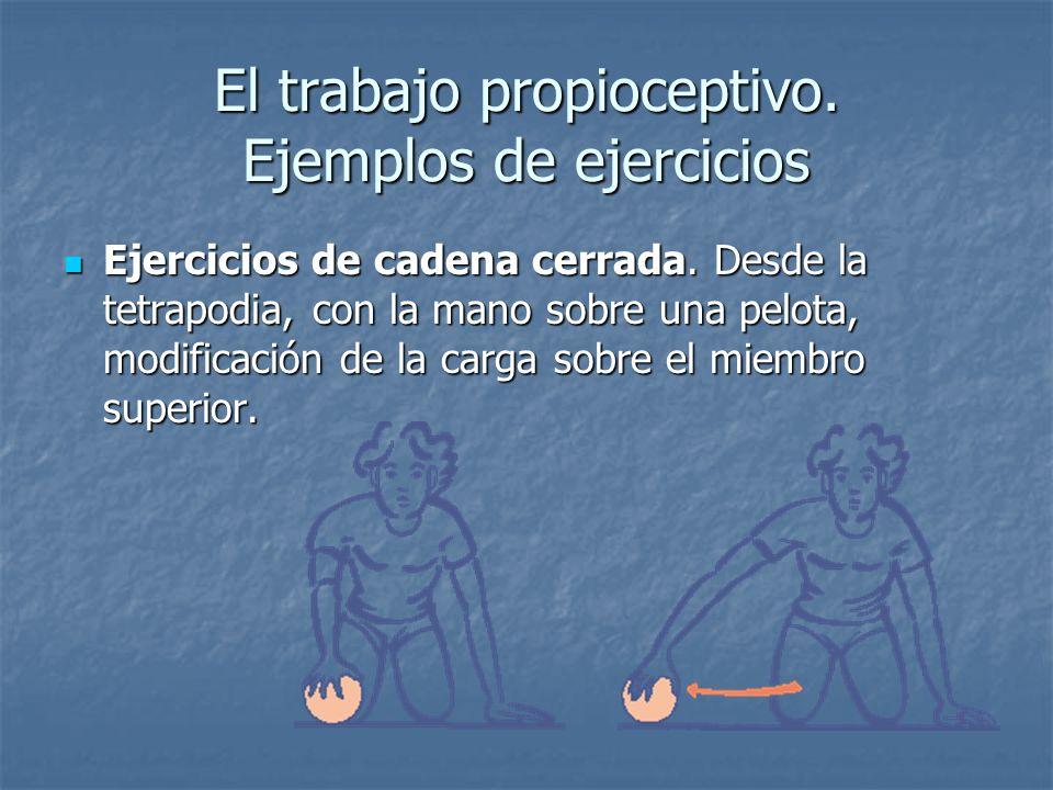 El trabajo propioceptivo. Ejemplos de ejercicios Ejercicios de cadena cerrada. Desde la tetrapodia, con la mano sobre una pelota, modificación de la c