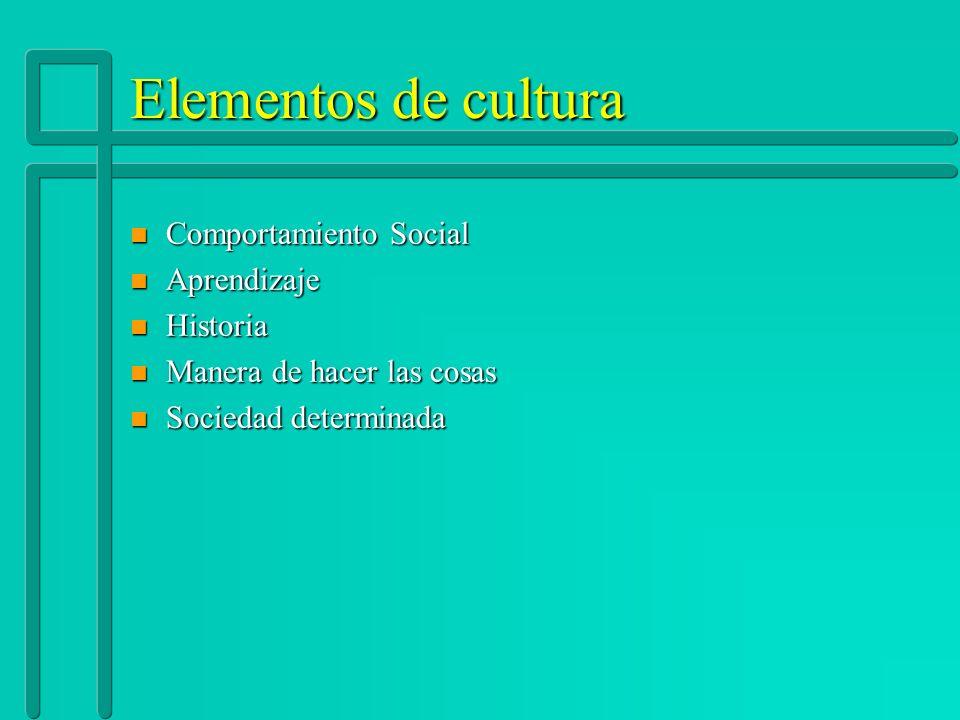 Elementos de cultura n Comportamiento Social n Aprendizaje n Historia n Manera de hacer las cosas n Sociedad determinada