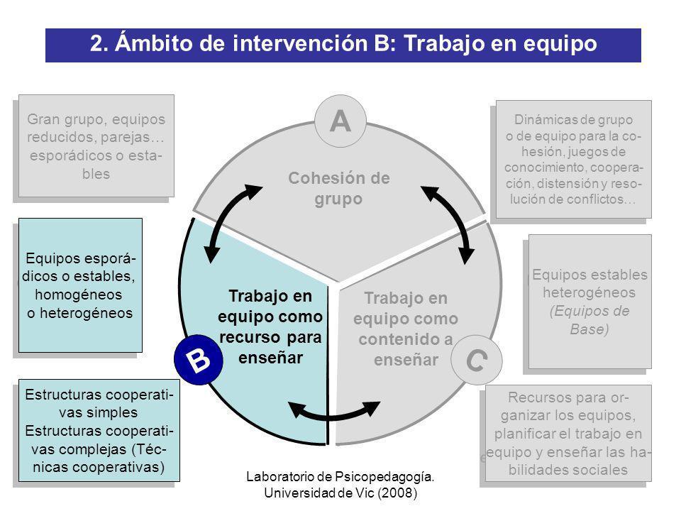 Laboratorio de Psicopedagogía. Universidad de Vic (2008) 1 PROGRAMA CA/AC: Cooperar para Aprender / Aprender a Cooperar (III) Proyecto PAC: Programa d