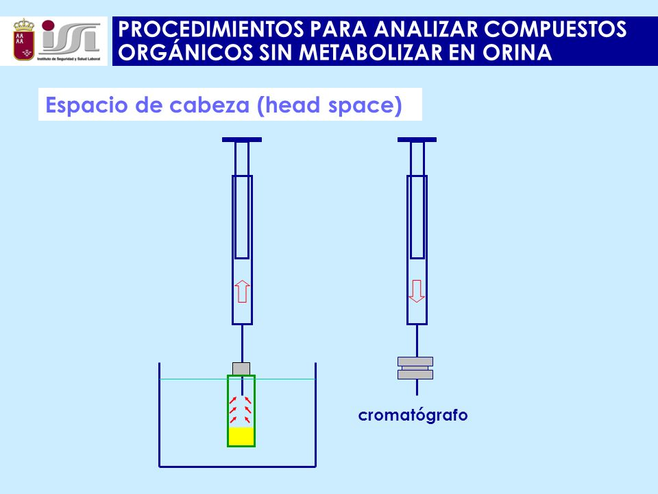 PROCEDIMIENTOS PARA ANALIZAR COMPUESTOS ORGÁNICOS SIN METABOLIZAR EN ORINA Espacio de cabeza (head space) cromatógrafo