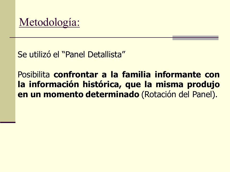 Se utilizó el Panel Detallista Posibilita confrontar a la familia informante con la información histórica, que la misma produjo en un momento determinado (Rotación del Panel).