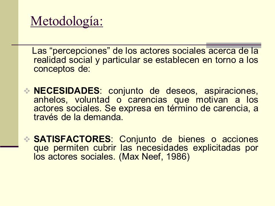 Niveles de Representatividad PANEL DE ACTORES SOCIALES Ondas anuales 2005, 2006, 2007 y 2009.