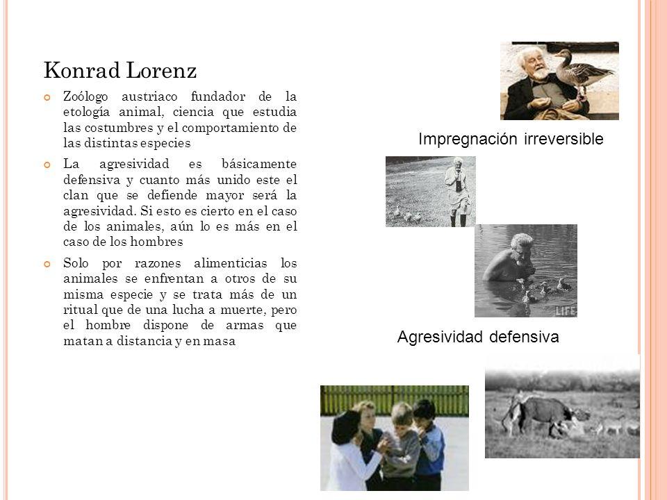 Konrad Lorenz Zoólogo austriaco fundador de la etología animal, ciencia que estudia las costumbres y el comportamiento de las distintas especies La ag