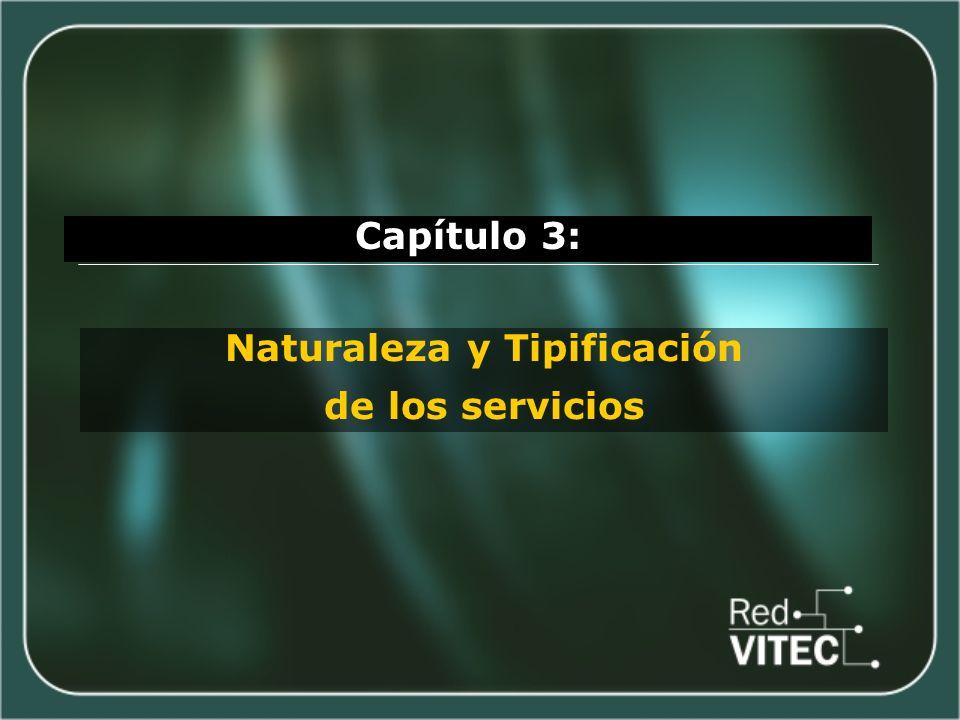 Capítulo 3: Naturaleza y Tipificación de los servicios