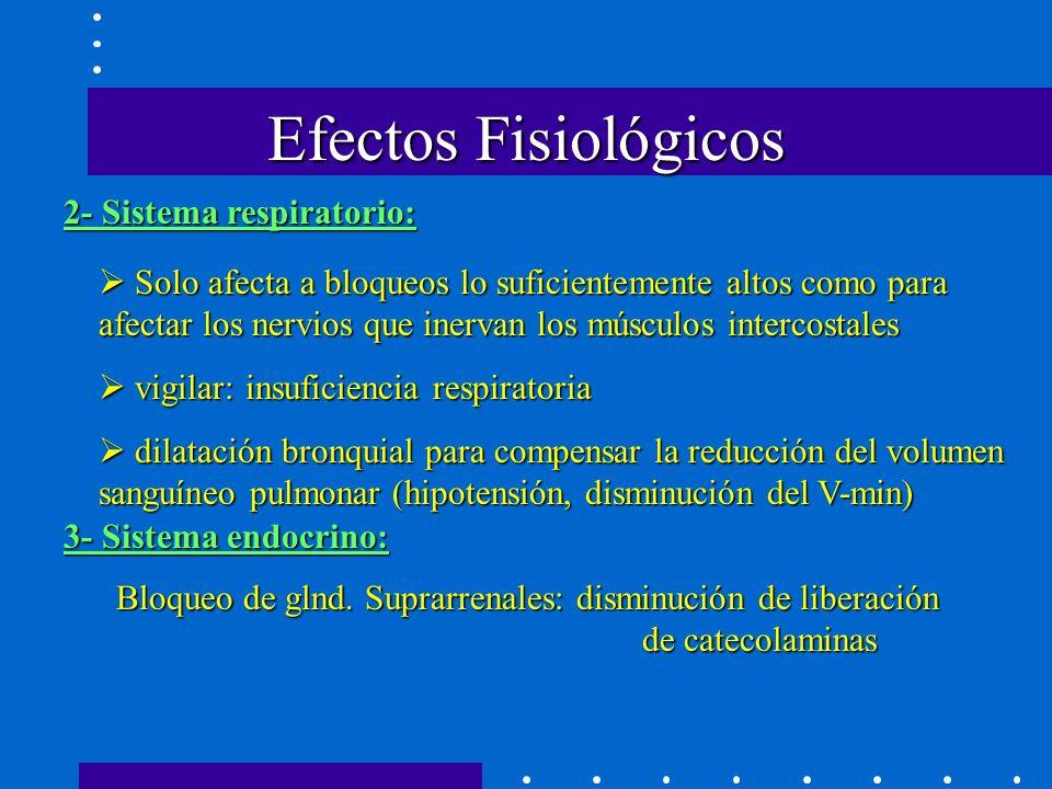 Efectos Fisiológicos 2- Sistema respiratorio: Solo afecta a bloqueos lo suficientemente altos como para afectar los nervios que inervan los músculos intercostales Solo afecta a bloqueos lo suficientemente altos como para afectar los nervios que inervan los músculos intercostales vigilar: insuficiencia respiratoria vigilar: insuficiencia respiratoria dilatación bronquial para compensar la reducción del volumen sanguíneo pulmonar (hipotensión, disminución del V-min) dilatación bronquial para compensar la reducción del volumen sanguíneo pulmonar (hipotensión, disminución del V-min) 3- Sistema endocrino: Bloqueo de glnd.