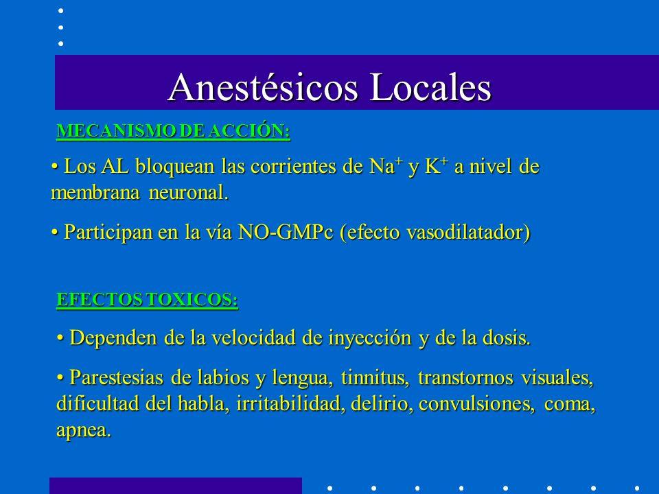 Anestésicos Locales MECANISMO DE ACCIÓN: Los AL bloquean las corrientes de Na + y K + a nivel de membrana neuronal.