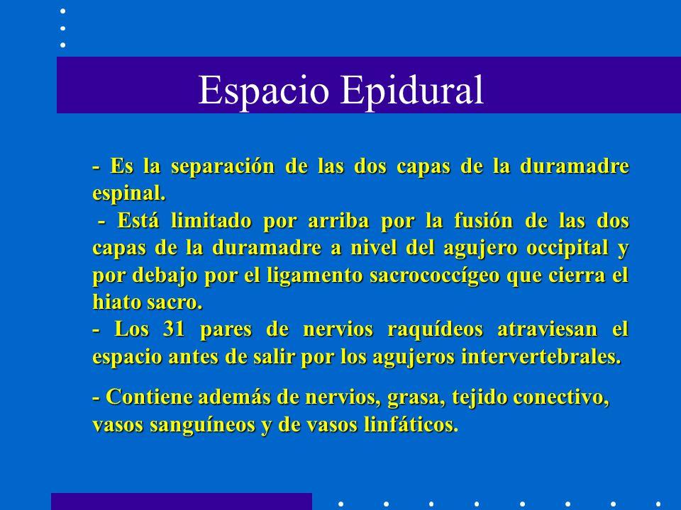 Espacio Epidural - Es la separación de las dos capas de la duramadre espinal.