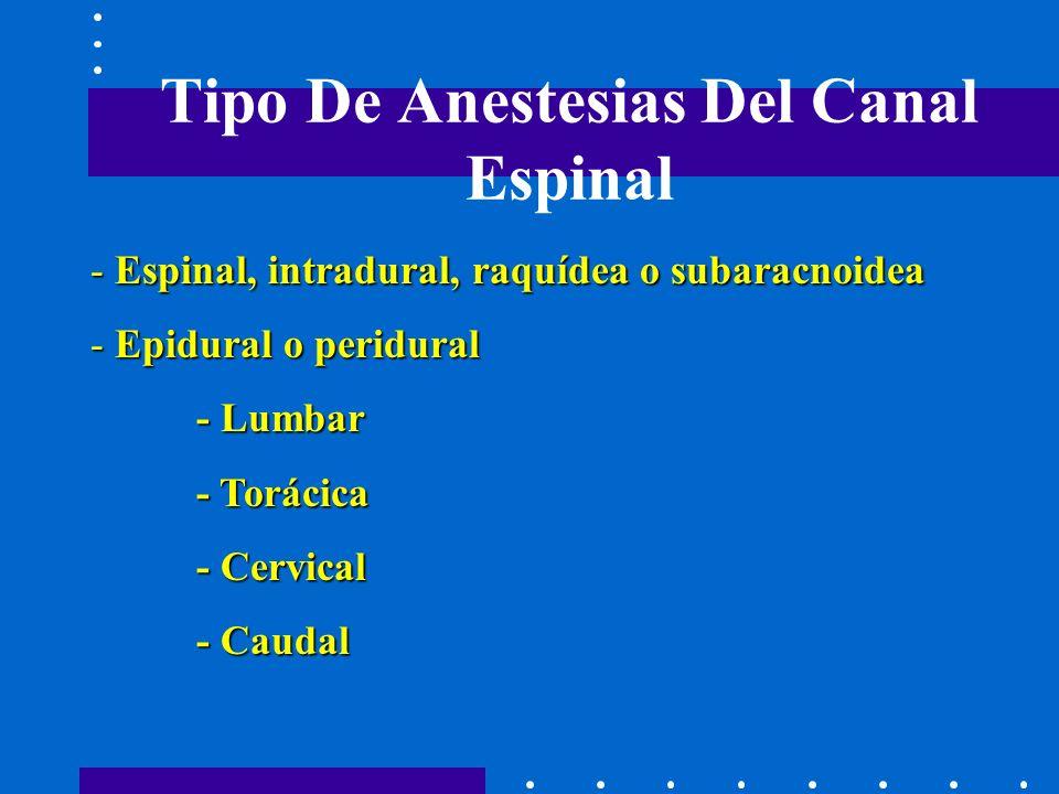 Tipo De Anestesias Del Canal Espinal - Espinal, intradural, raquídea o subaracnoidea - Epidural o peridural - Lumbar - Torácica - Cervical - Caudal