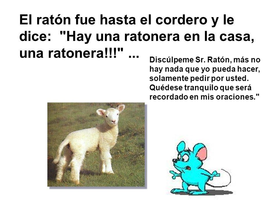 El ratón se dirigió entonces a la vaca., y la vaca le dijo: Pero acaso, yo estoy en peligro.