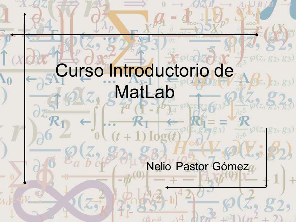 Curso Introductorio de MatLab Nelio Pastor Gómez