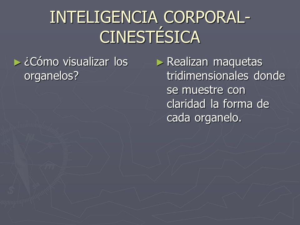 INTELIGENCIA INTERPERSONAL ¿De qué modo dar a conocer la información al resto de los alumnos de Primero medio.