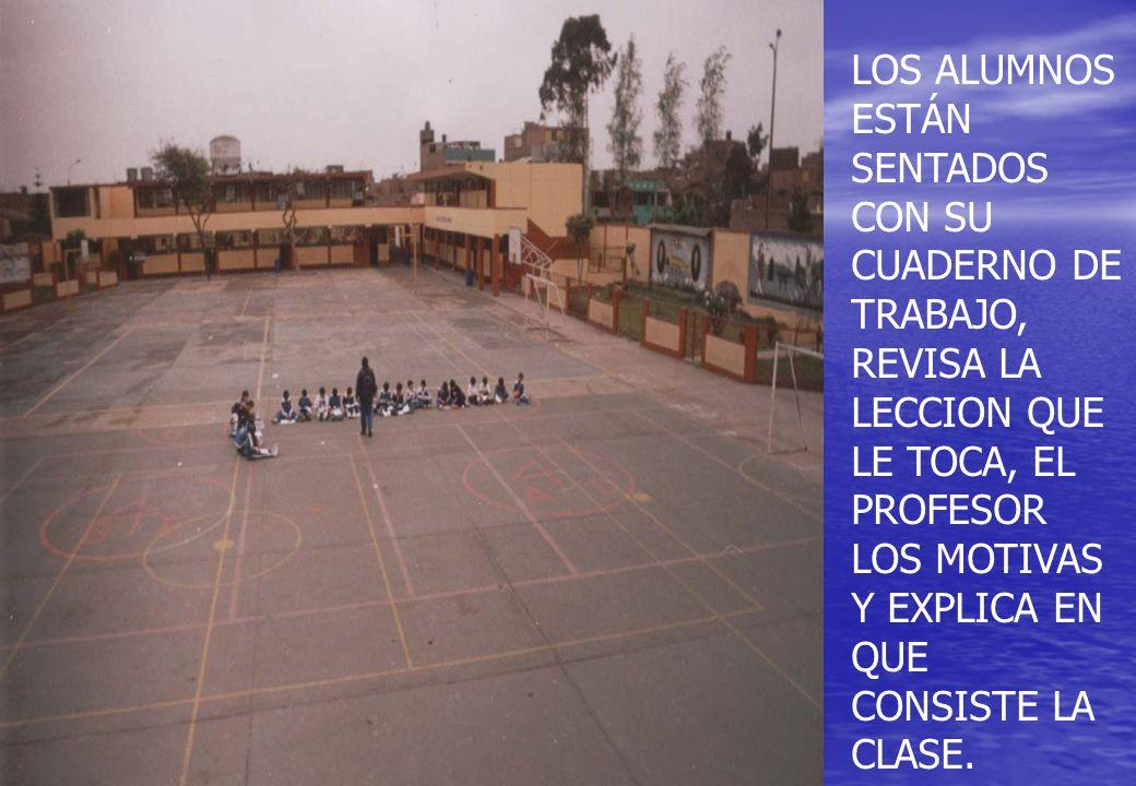 Los profesores de aula tiene una mejorar forma de conocer las capacidades que están trabajando el profesor de educación física.