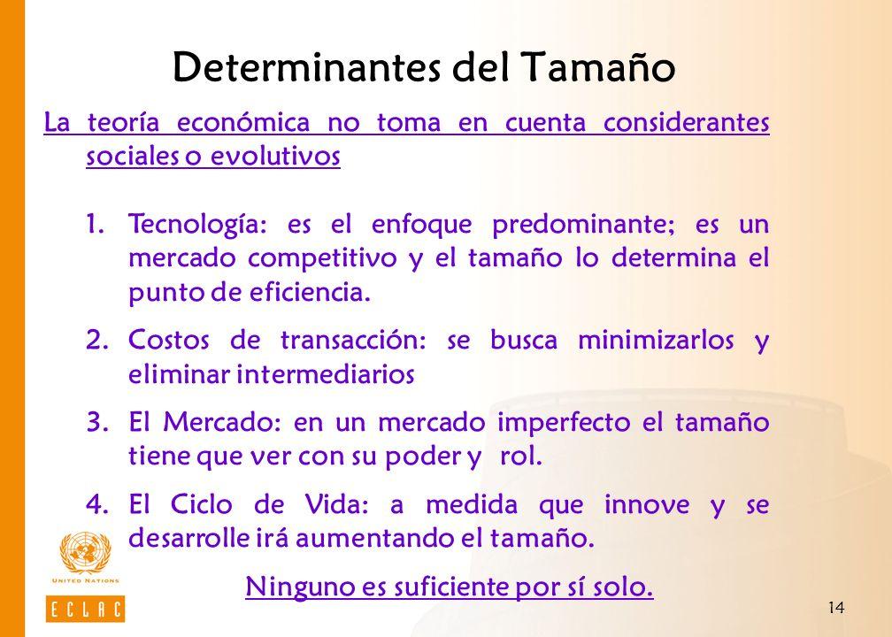 14 Determinantes del Tamaño La teoría económica no toma en cuenta considerantes sociales o evolutivos 1.Tecnología: es el enfoque predominante; es un