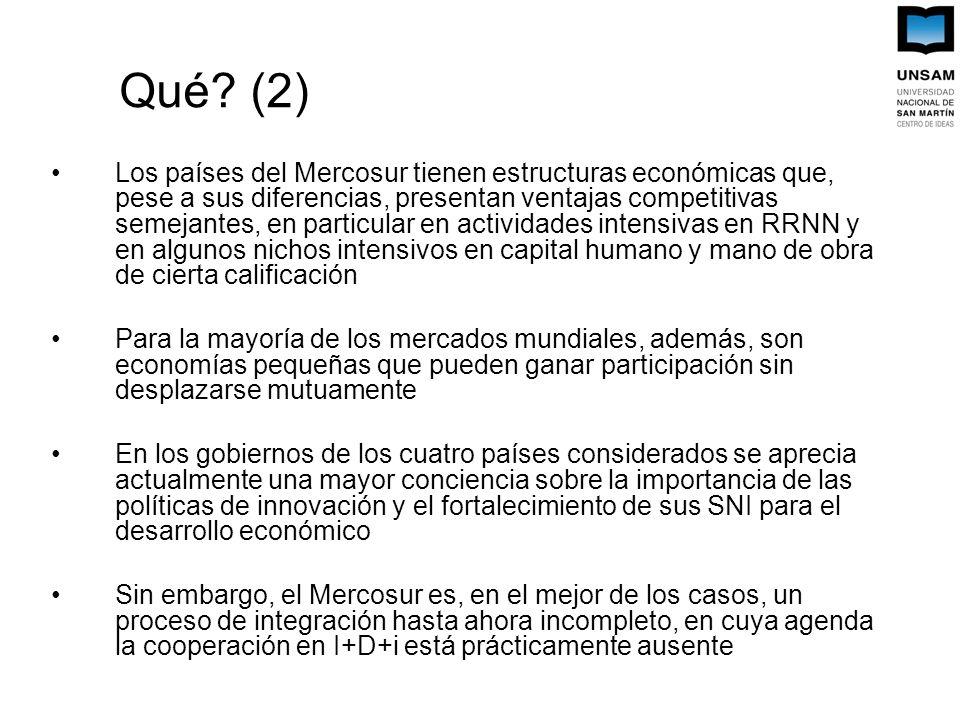 Qué? (2) Los países del Mercosur tienen estructuras económicas que, pese a sus diferencias, presentan ventajas competitivas semejantes, en particular