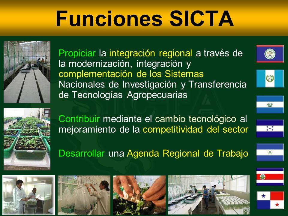 Funciones SICTA Propiciar la integración regional a través de la modernización, integración y complementación de los Sistemas Nacionales de Investigación y Transferencia de Tecnologías Agropecuarias Contribuir mediante el cambio tecnológico al mejoramiento de la competitividad del sector Desarrollar una Agenda Regional de Trabajo