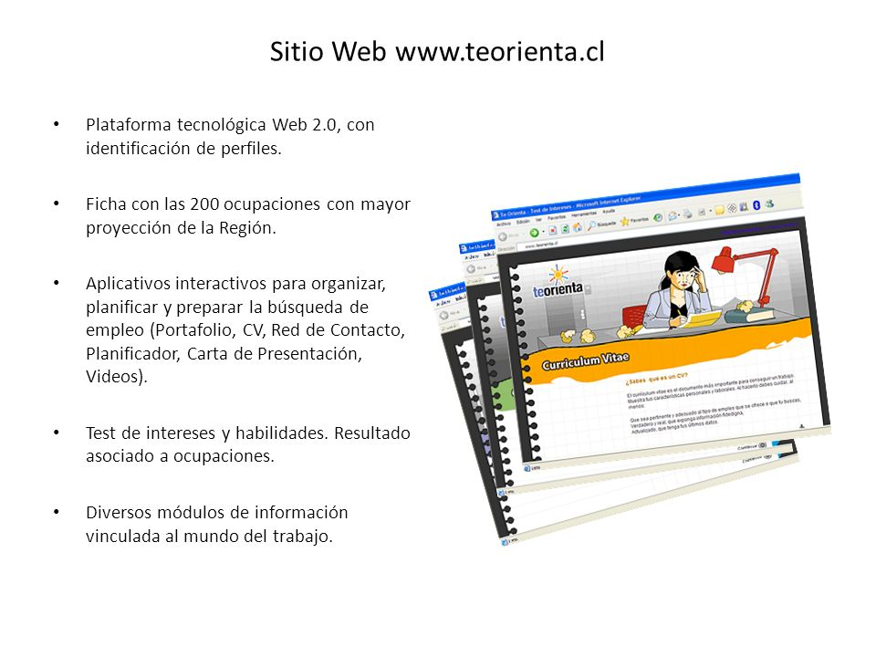 Sitio Web www.teorienta.cl Plataforma tecnológica Web 2.0, con identificación de perfiles.
