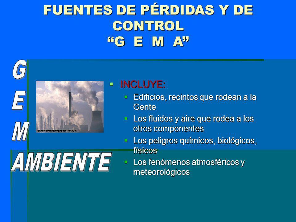 FUENTES DE PÉRDIDAS Y DE CONTROL G E M A INCLUYE: INCLUYE: Edificios, recintos que rodean a la Gente Edificios, recintos que rodean a la Gente Los flu
