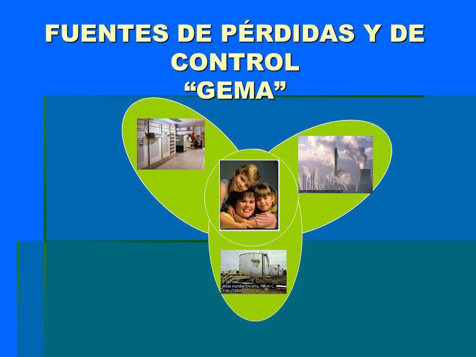 FUENTES DE PÉRDIDAS Y DE CONTROL GEMA