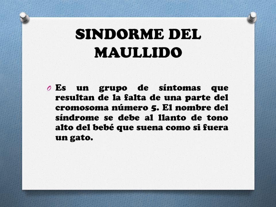 SINDORME DEL MAULLIDO O Es un grupo de síntomas que resultan de la falta de una parte del cromosoma número 5. El nombre del síndrome se debe al llanto