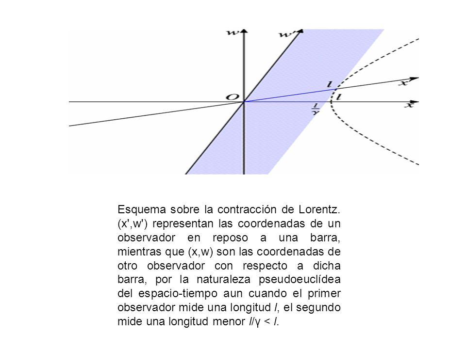 Esquema sobre la contracción de Lorentz. (x',w') representan las coordenadas de un observador en reposo a una barra, mientras que (x,w) son las coorde