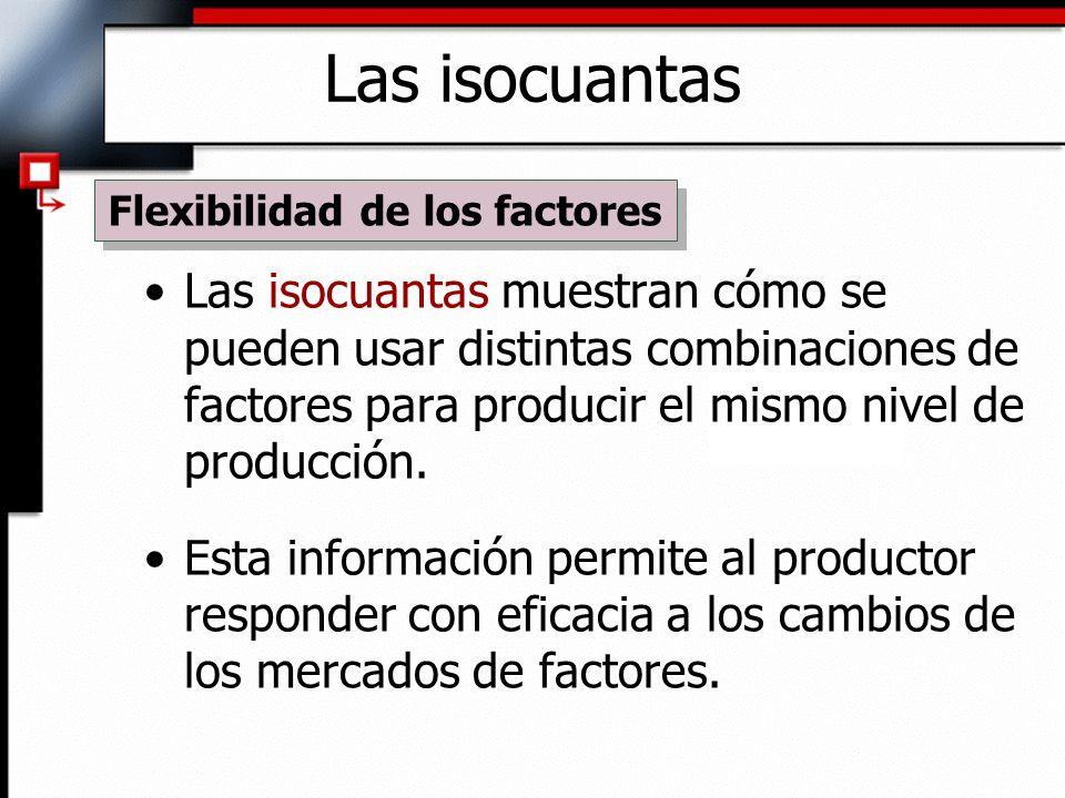 Las isocuantas muestran cómo se pueden usar distintas combinaciones de factores para producir el mismo nivel de producción.