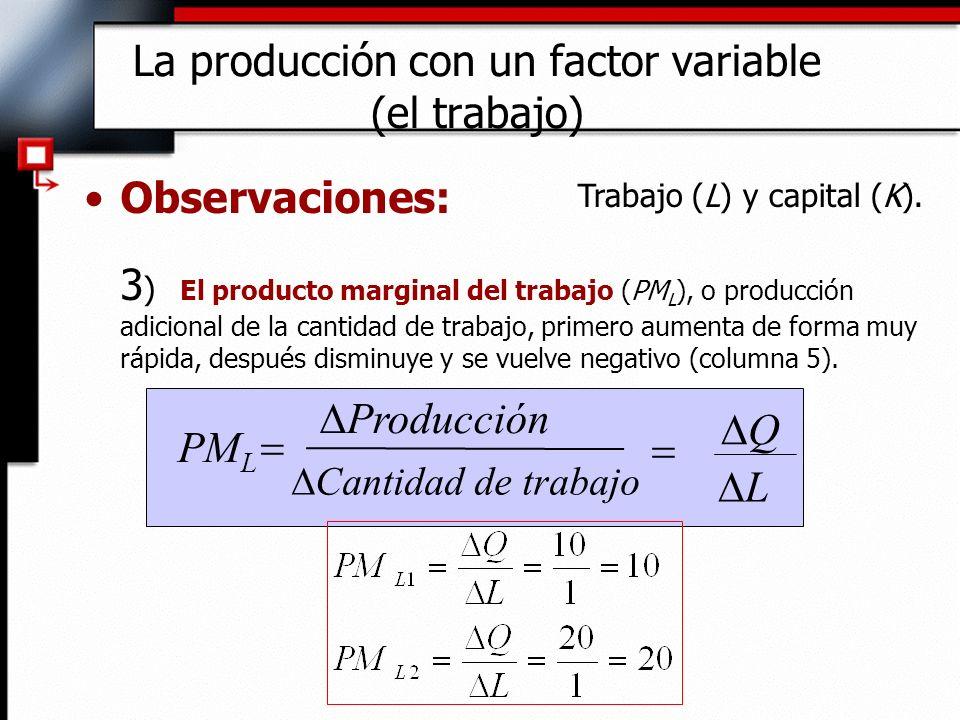 Observaciones: 3 ) El producto marginal del trabajo (PM L ), o producción adicional de la cantidad de trabajo, primero aumenta de forma muy rápida, después disminuye y se vuelve negativo (columna 5).