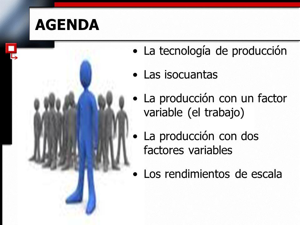 AGENDA La tecnología de producción Las isocuantas La producción con un factor variable (el trabajo) La producción con dos factores variables Los rendimientos de escala