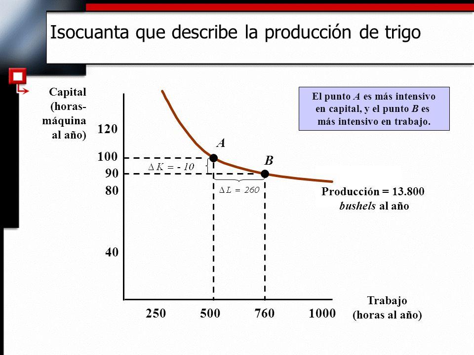 Isocuanta que describe la producción de trigo Trabajo (horas al año) Capital (horas- máquina al año) 2505007601000 40 80 120 100 90 Producción = 13.800 bushels al año A B El punto A es más intensivo en capital, y el punto B es más intensivo en trabajo.