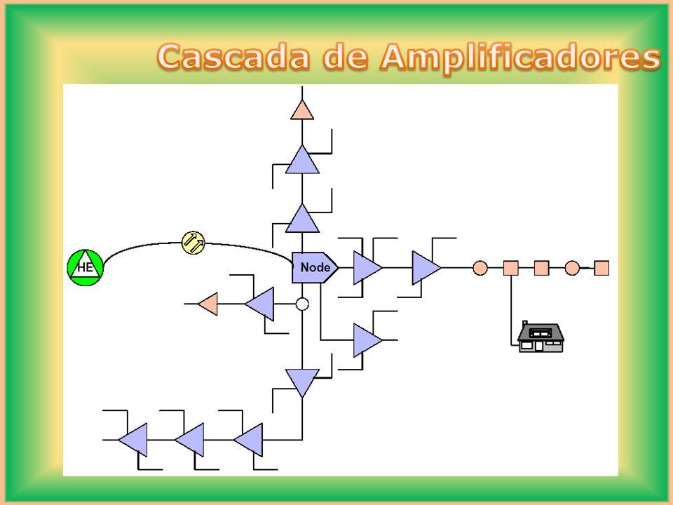 Árbol Características: -Generalmente Redes antiguas (TV únicamente) -Difícil control de ruido -Múltiples mantenimientos -Posee múltiples puntos de falla -Por lo general no se realiza diseño -Red des-balanceada -1000 a 5000 HHPP