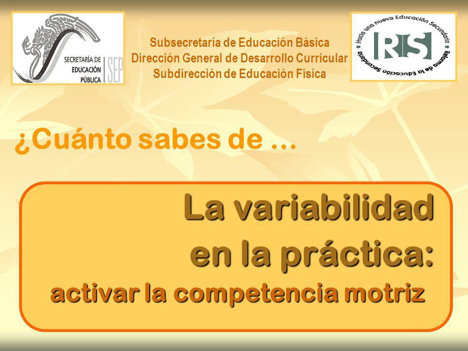 ¿Cómo contribuir al desarrollo y edificación de la competencia motriz .