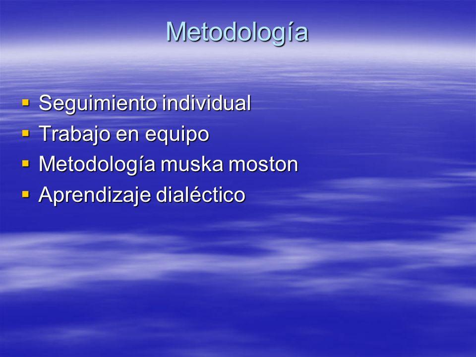Metodología Seguimiento individual Seguimiento individual Trabajo en equipo Trabajo en equipo Metodología muska moston Metodología muska moston Aprend