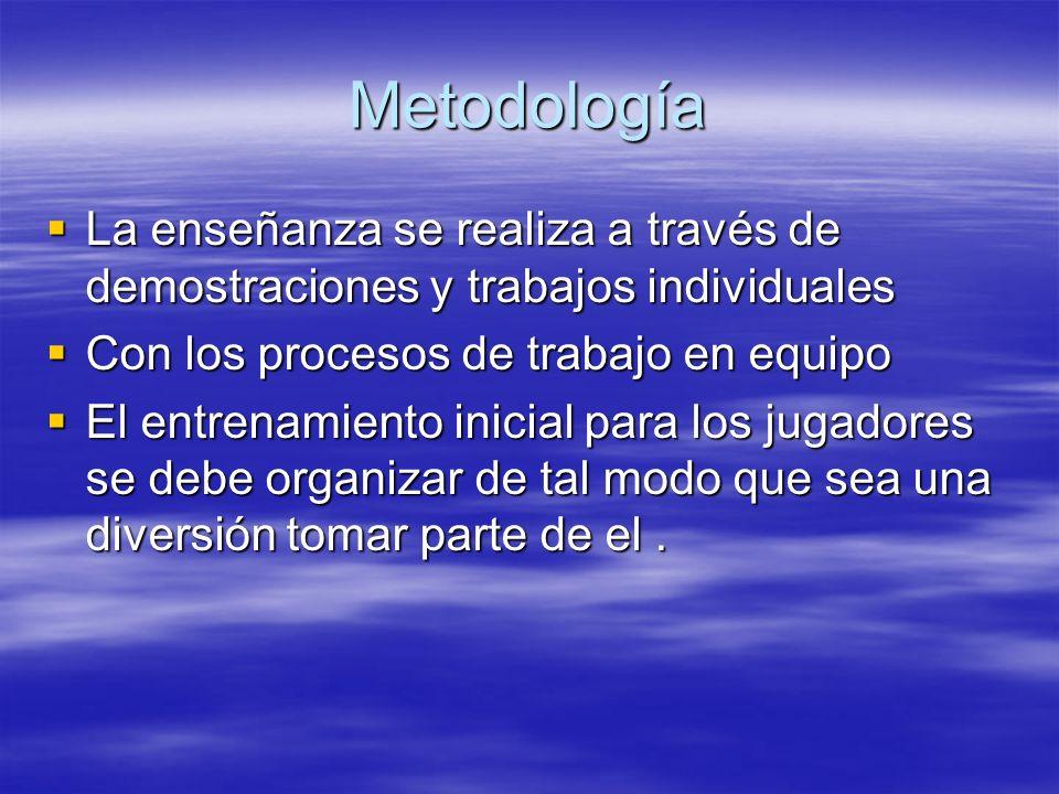 Metodología La enseñanza se realiza a través de demostraciones y trabajos individuales La enseñanza se realiza a través de demostraciones y trabajos i