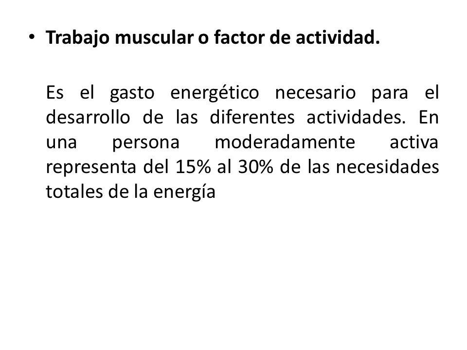 Trabajo muscular o factor de actividad.
