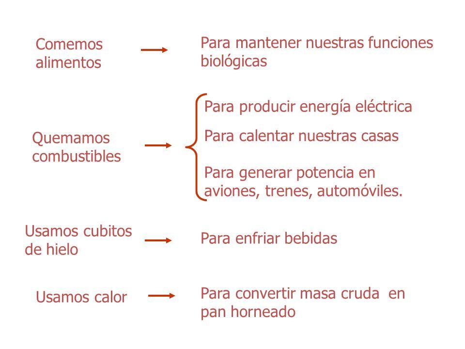 Comemos alimentos Para mantener nuestras funciones biológicas Quemamos combustibles Para producir energía eléctrica Para calentar nuestras casas Para generar potencia en aviones, trenes, automóviles.