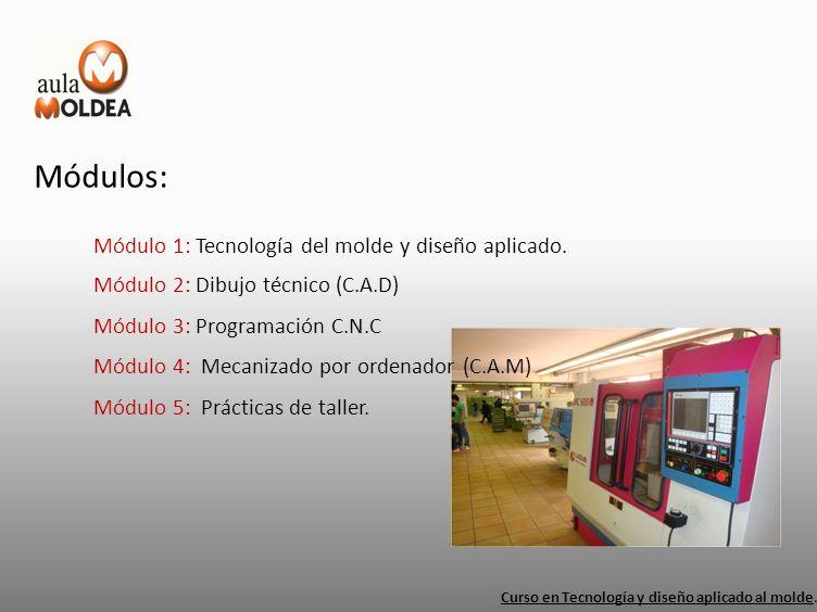 Módulos: Módulo 1: Tecnología del molde y diseño aplicado. Curso en Tecnología y diseño aplicado al molde. Módulo 2: Dibujo técnico (C.A.D) Módulo 3: