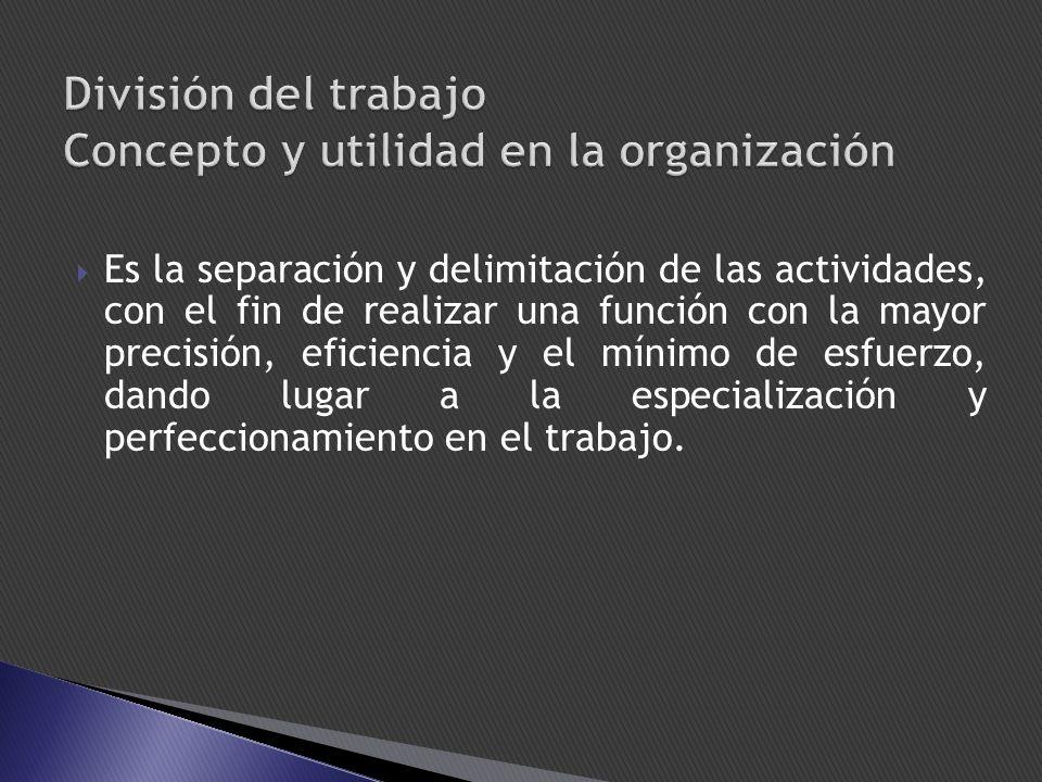 Es la separación y delimitación de las actividades, con el fin de realizar una función con la mayor precisión, eficiencia y el mínimo de esfuerzo, dan