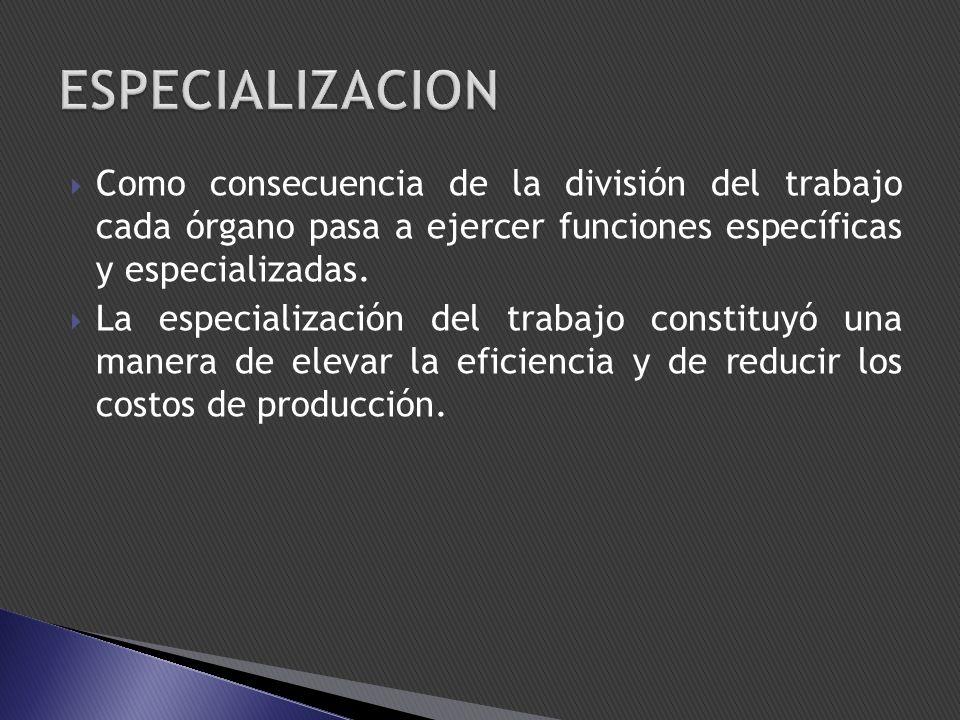 Como consecuencia de la división del trabajo cada órgano pasa a ejercer funciones específicas y especializadas. La especialización del trabajo constit