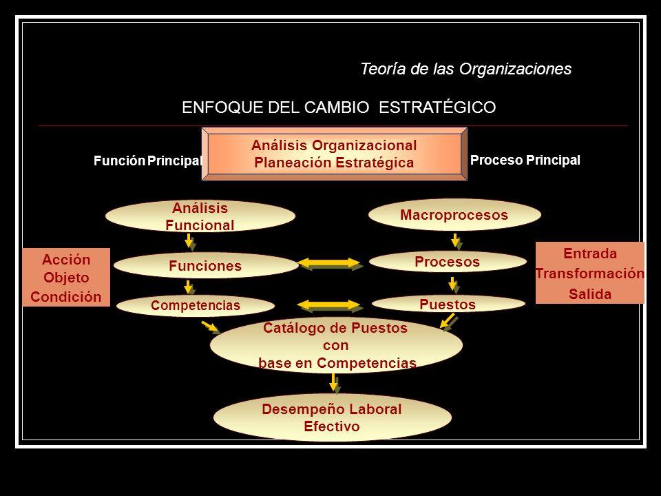 Teoría de las Organizaciones Acción Objeto Condición Análisis Funcional Macroprocesos Funciones Procesos Puestos Catálogo de Puestos con base en Compe